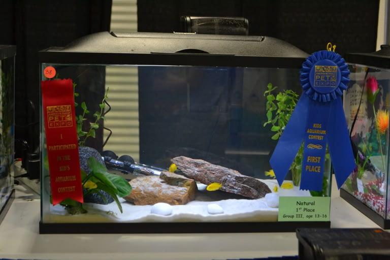 Kids Aquarium Contest Natural Group 3 1