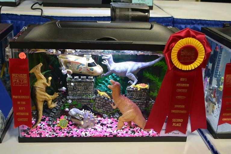 Pet Expo Kids Aquarium 2nd Place