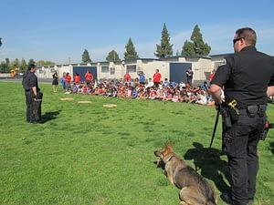 Orange County Pet Event