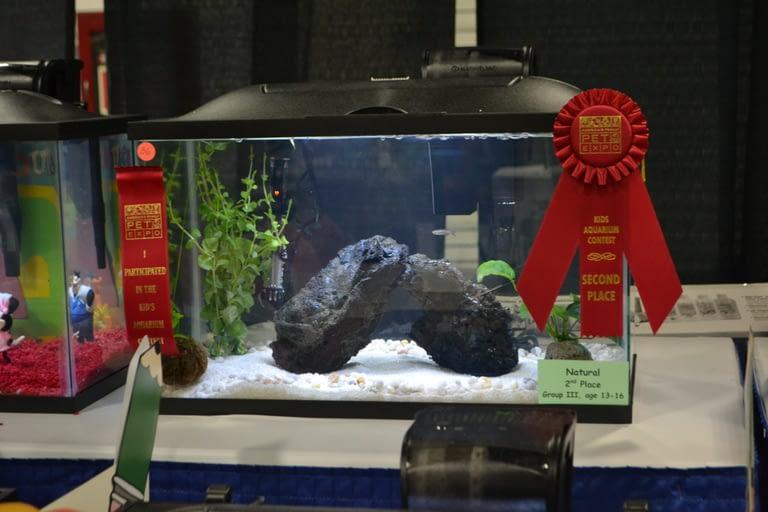 Kids Aquarium Contest Natural group 3 2