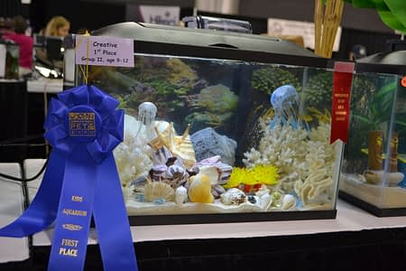 America's Family Pet Expo Ribbon Winner