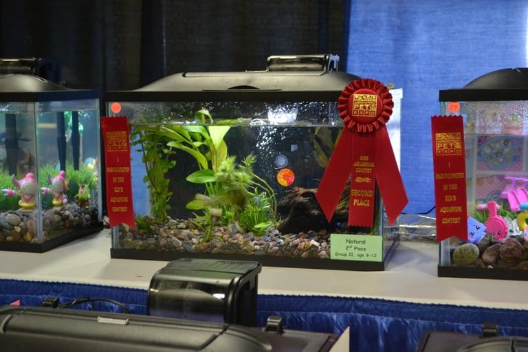 Kids Aquarium Contest Natural Group 2 2