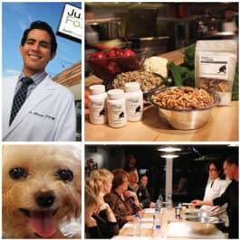 dog food exhibitor