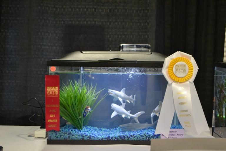 Kids Aquarium Contest Sponsor 3rd
