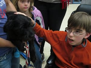 America's Family Pet Expo, Ability First