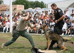 Pet Expo K9 police dogs