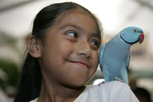America's Family Pet Expo, bird adoption